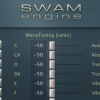 SWAM Options